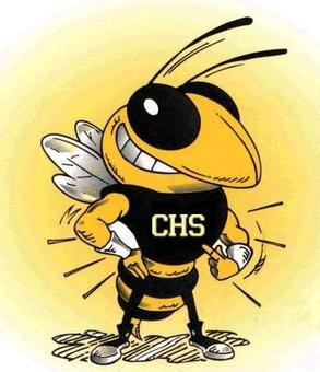File Yellowjacket  cartoon of school mascot  Calhoun High School    Yellow Jacket Mascot