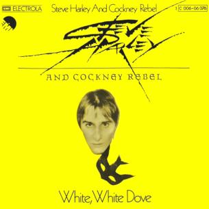 White, White Dove 1976 single by Steve Harley & Cockney Rebel
