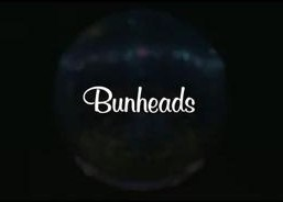 This is the logo for the show, Bunheads.jpg