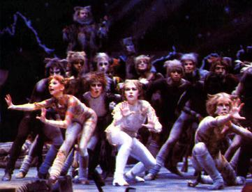 Broadway Plays Cats Animals
