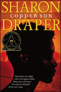Image result for copper sun cover