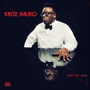 <i>Son of Sam</i> (album) 2013 studio album by Krizz Kaliko