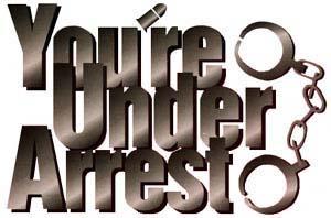 <i>Youre Under Arrest</i> (manga) Manga series