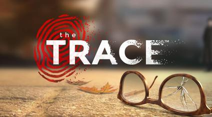 The Trace Video Game Wikipedia