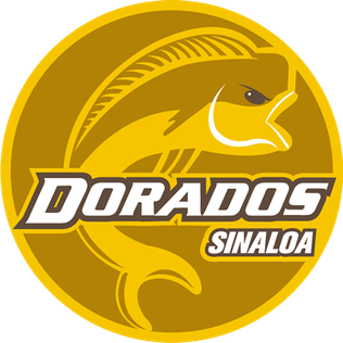 Dorados de Sinaloa Mexican association football club