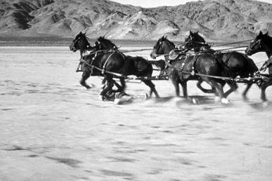 "Yakima in John Ford's Stagecoach doing the ""drop"" part of his most famous stunt"