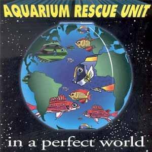Aquarium Rescue Unit At Cat S Cradle