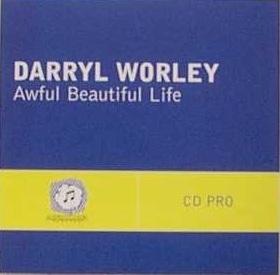 Awful, Beautiful Life 2004 single by Darryl Worley