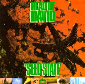 <i>Seed State</i> 1991 studio album by Head of David