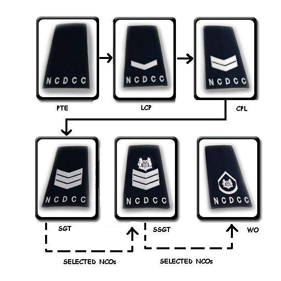 National Civil Defence Cadet Corps (Singapore) Cadet Ranks.jpg