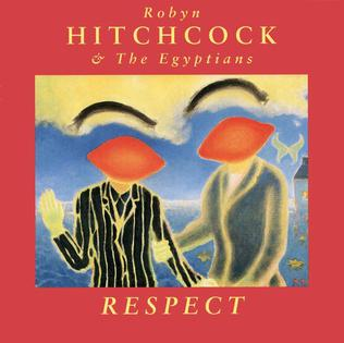 <i>Respect</i> (Robyn Hitchcock album) 1993 album by Robyn Hitchcock & The Egyptians