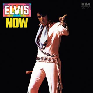Elvis_now.jpg
