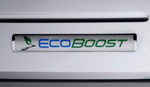 Ford Ecoboost logo (on Ford Flex)