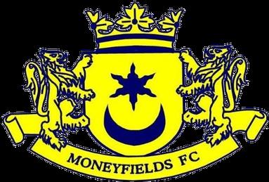 Moneyfields' logo