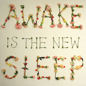 Awake Is the New Sleep album cover