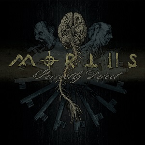<i>Perfectly Defect</i> 2010 studio album by Mortiis