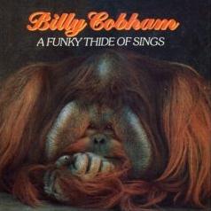 """Le """"jazz-rock"""" au sens large (des années 60 à nos jours) - Page 8 A_Funky_Thide_of_Things"""
