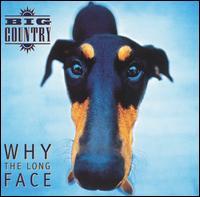 <i>Why the Long Face</i> (album) 1995 studio album by Big Country