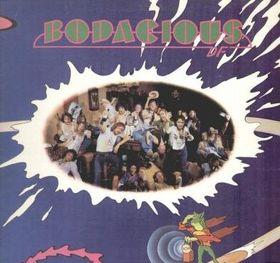 <i>Bodacious DF</i> 1973 studio album by Bodacious DF