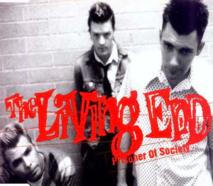 Prisoner of Society 1998 single by The Living End