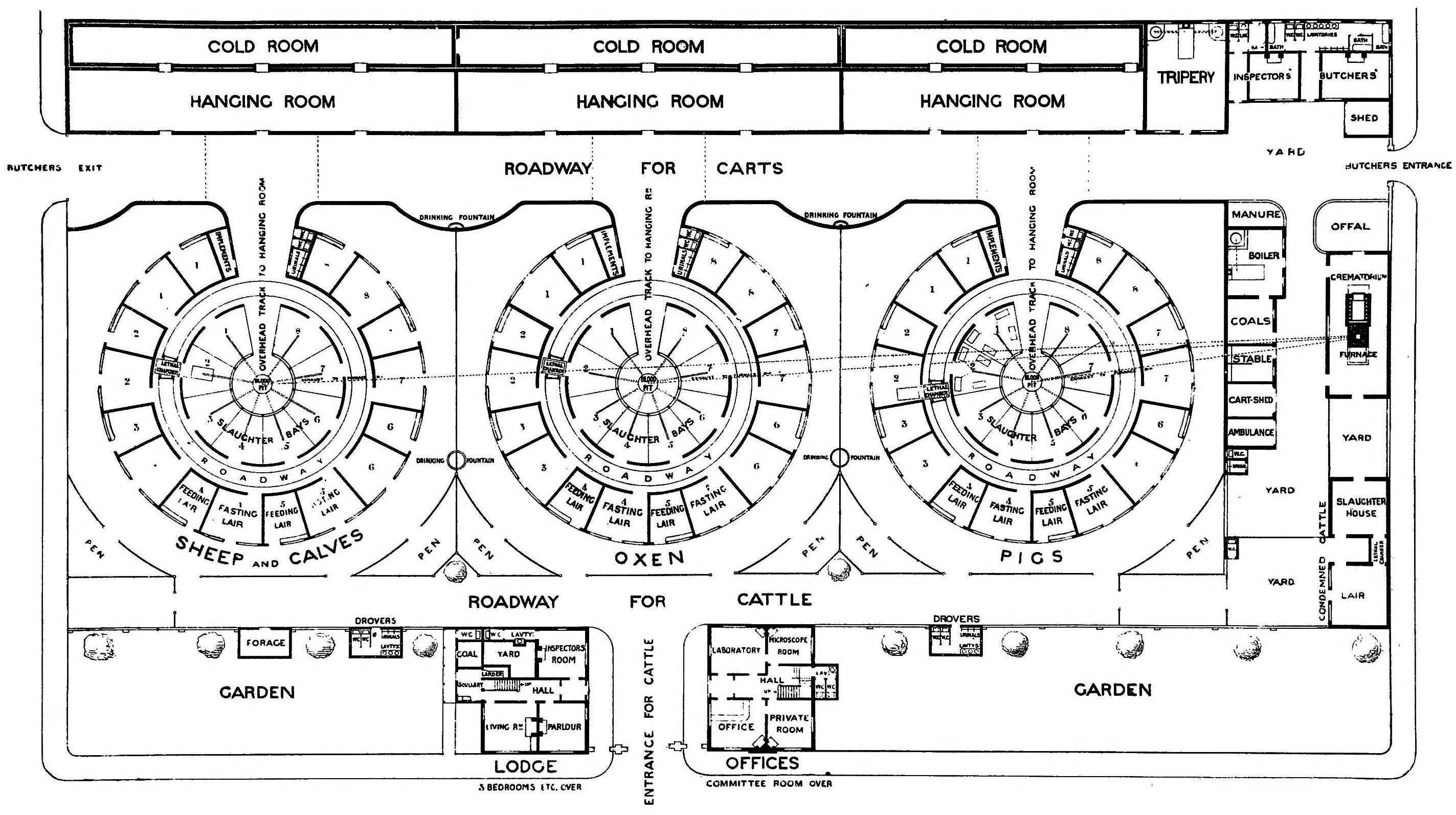 Modern slaughter house design