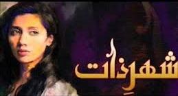 <i>Shehr-e-Zaat</i> Pakistani drama television series