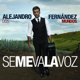 Alejandro Fernandez Spanish Classes Miami Beach