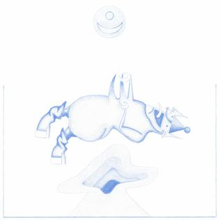 <i>Ape in Pink Marble</i> 2016 studio album by Devendra Banhart