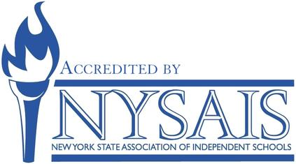 Image result for NYSAIS logo