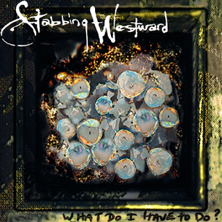 What Do I Have to Do? (Stabbing Westward song) 1996 song performed by Stabbing Westward