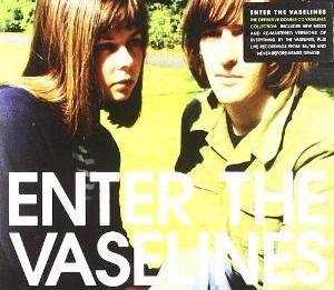 <i>Enter the Vaselines</i> 2009 compilation album by The Vaselines
