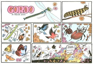 Gordo, Sunday comic strip honoring Rachel Carson, by Gus Arriola