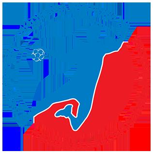 Russia mens national handball team