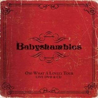 <i>Oh! What a Lovely Tour</i> 2008 live album / DVD by Babyshambles