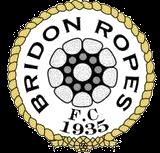 Bridon Ropes F.C. Association football club in England