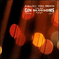 Follow You Down 1996 single by Gin Blossoms