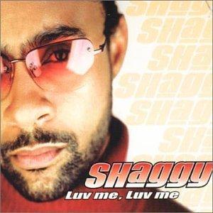Luv Me, Luv Me 1998 single by Shaggy