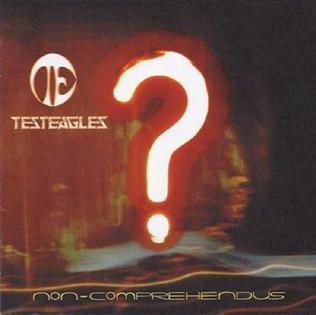 <i>Non Comprehendus</i> 2000 studio album by Testeagles