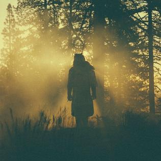 <i>The Beyond / Where the Giants Roam</i> 2015 EP by Thundercat