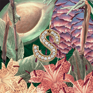 <i>S</i> (EP) 2013 EP by SZA