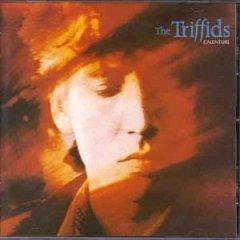 <i>Calenture</i> (album) 1987 studio album by The Triffids