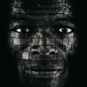 Seal_System_Album_Cover.JPG
