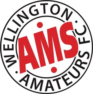 Wellington Amateurs F.C. Association football club in England