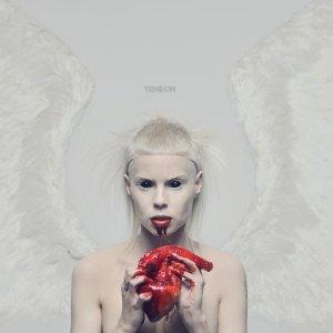 <i>Tension</i> (Die Antwoord album) 2012 studio album by Die Antwoord