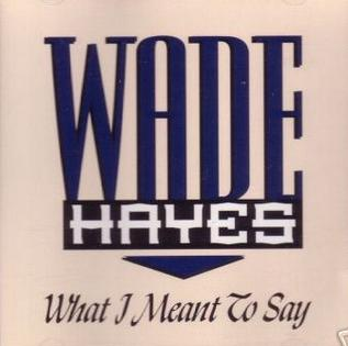 What I Meant to Say 1995 single by Wade Hayes