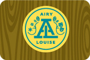 4%2f47%2fcamp airy logo