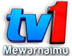 TV1 Logo 2011.png