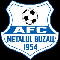 AFC Metalul Buzău Romanian football club