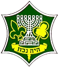 Israel Boy and Girl Scouts Federation.png