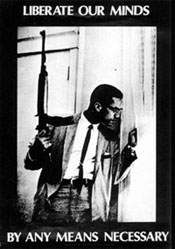 Malcolm_X_any_means_necessary.jpg